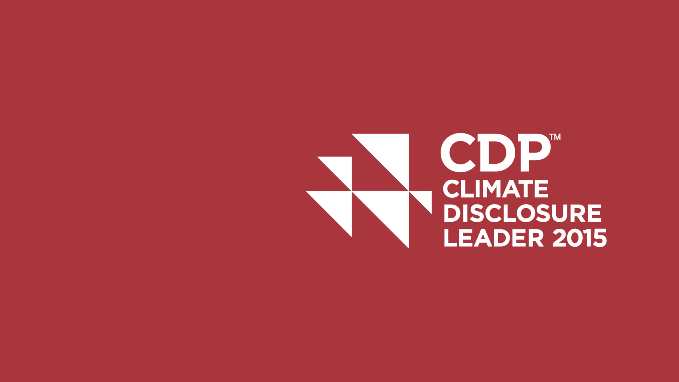 CDP climate dislosure leader 2015